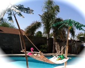 palms and hammock